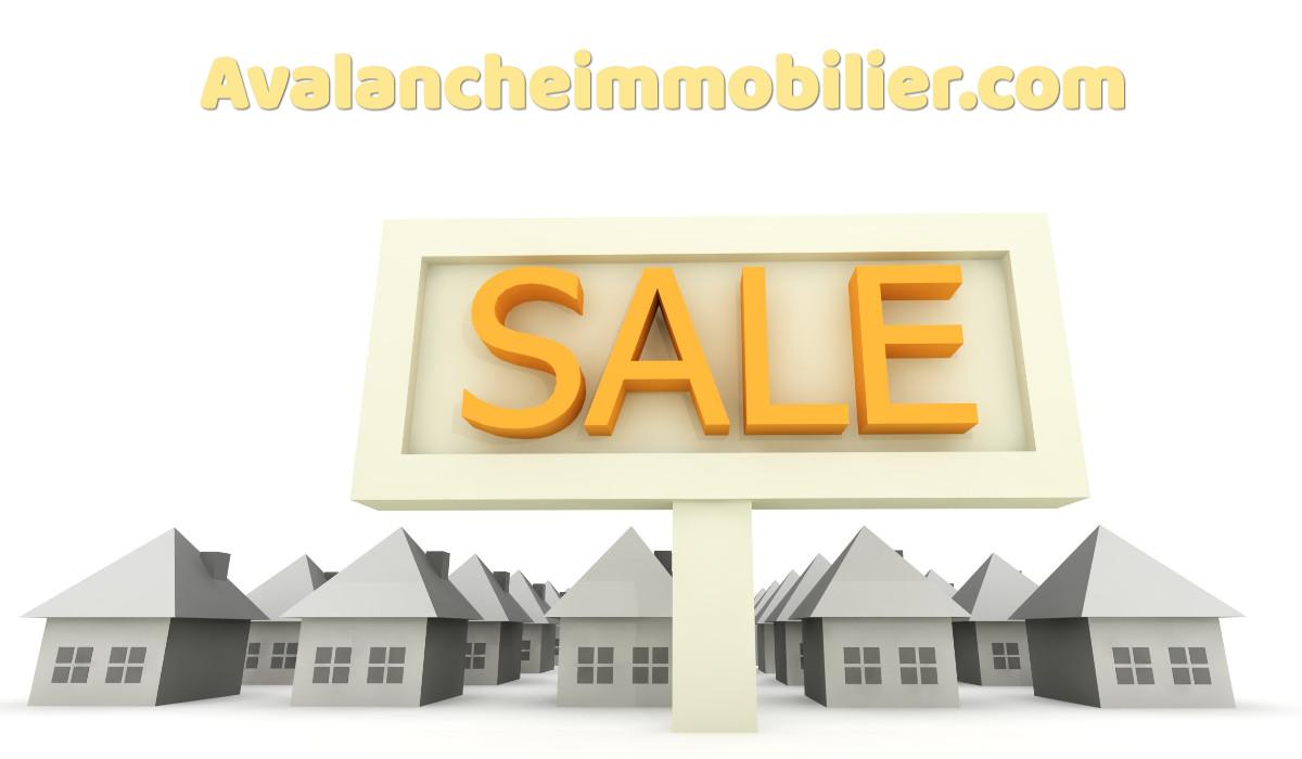 avalancheimmobilier.com